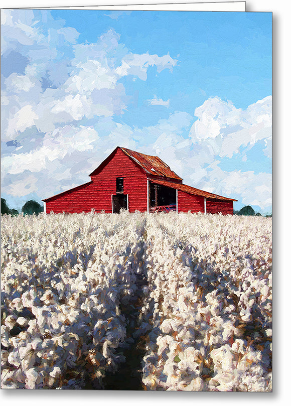 Cotton Ready For Harvest - Georgia Greeting Card