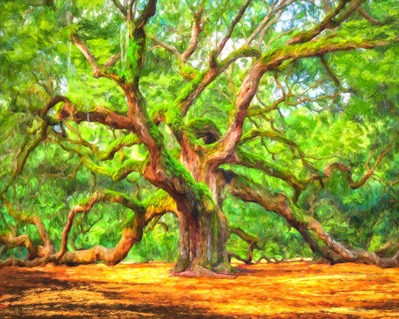Enduring Angel Oak - South Carolina Landscape Art Print