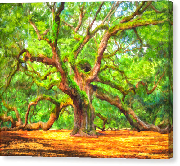 Enduring Angel Oak - South Carolina Landscape Canvas Print