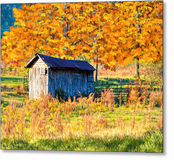 Fall Landscape - North Georgia Metal Print