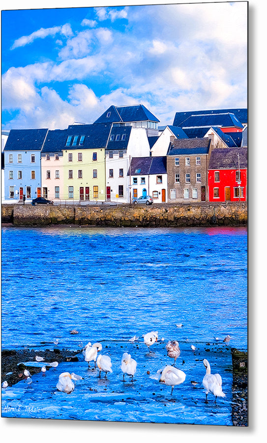 Galway Water View - Irish Metal Print