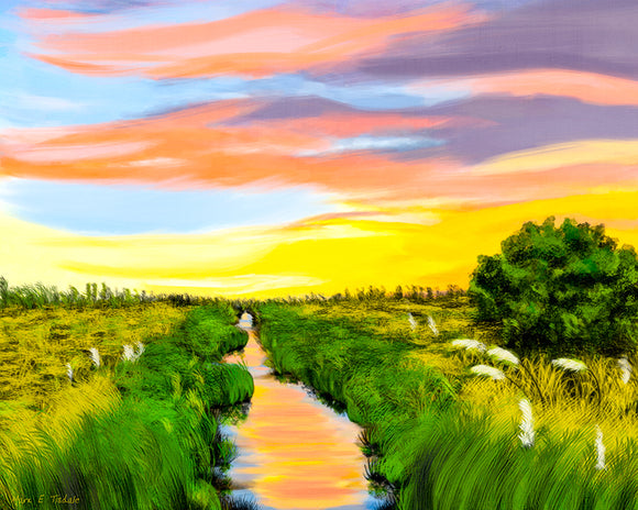 Georgia Coast Salt Marshes Art Print