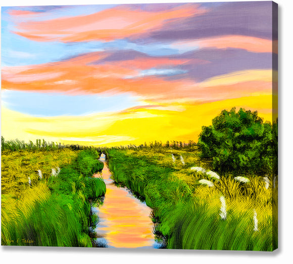 Georgia Coast Salt Marshes Canvas Print