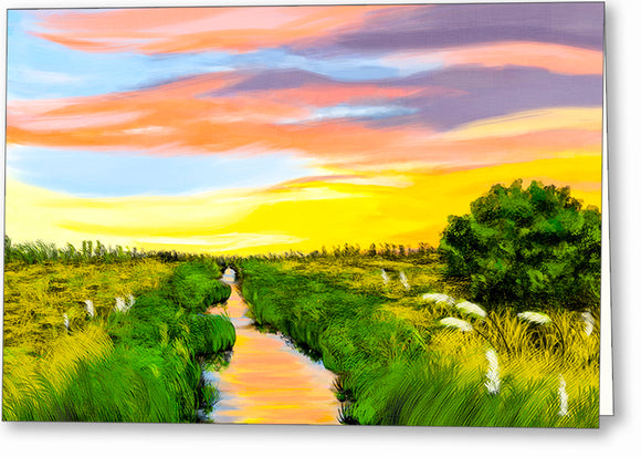 Georgia Coast Salt Marshes Greeting Card