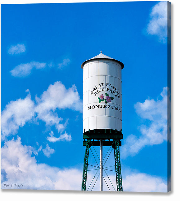 Montezuma Water Tower - Georgia Canvas Print
