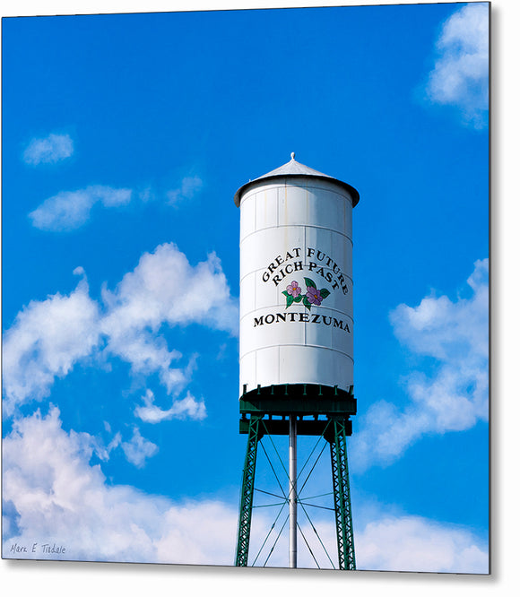 Montezuma Water Tower - Georgia Metal Print