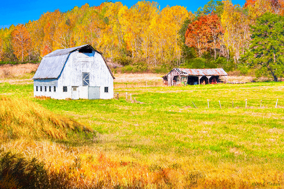 Old Barn - Georgia Fall Color Art Print
