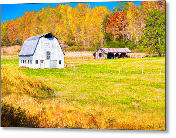 Old Barn - Georgia Fall Color Metal Print