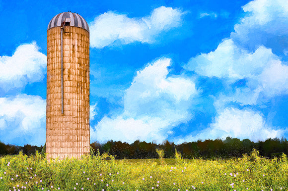 Old Grain Silo - Georgia Landscape Art Print