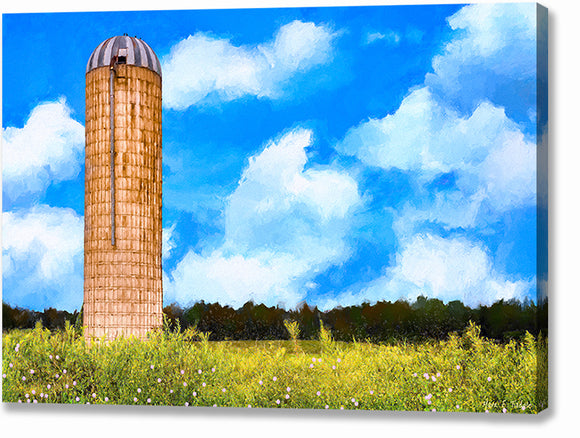 Old Grain Silo - Georgia Landscape Canvas Print