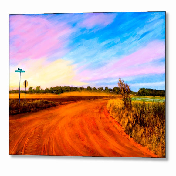 Rural Landscape Art - Georgia Sunset Metal Print