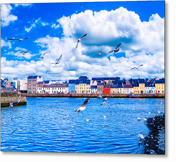 Seabirds In Flight - Galway Metal Print