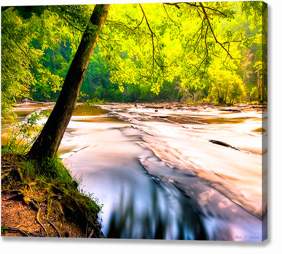 Sweetwater Creek - Georgia Landscape Canvas Print