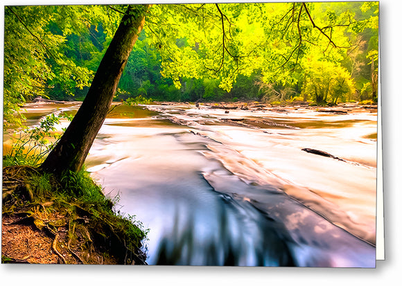 Sweetwater Creek - Georgia Landscape Greeting Card