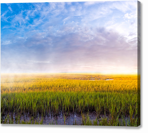 Tidal Marshes - Georgia Coast Canvas Print