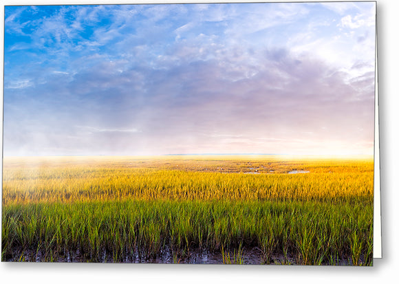 Tidal Marshes - Georgia Coast Greeting Card
