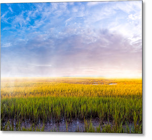 Tidal Marshes - Georgia Coast Metal Print