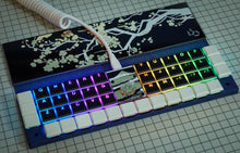 Load image into Gallery viewer, Naked48LED Keyboard Kit