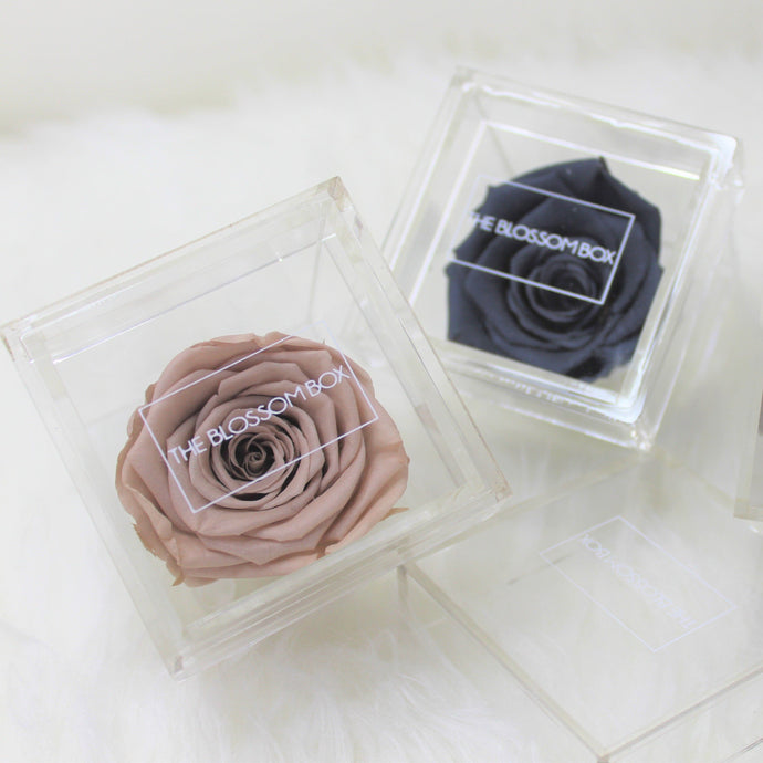 Single Eternity Rose Box