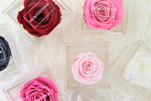 Load image into Gallery viewer, Crystal Collection | Single Eternity Rose Box