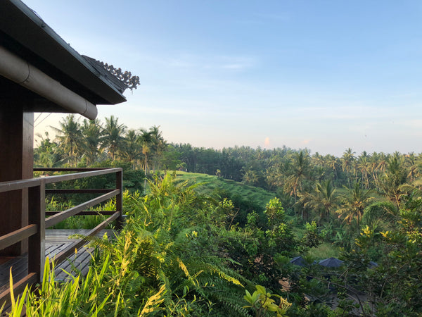 Soul Alchemy Bali Yoga Retreat with Sergio & Ariel [Soul Rooms]