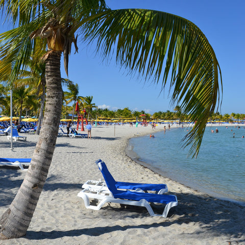 The Beach at Harvest Caye, Belize