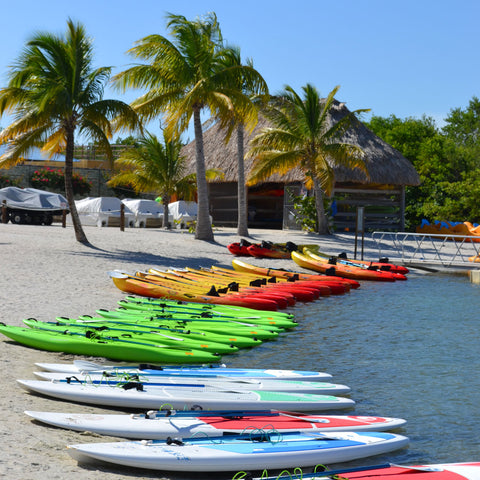 Paddle Boarding and Kayaking in Harvest Caye, Belize
