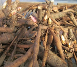 peony root for sale