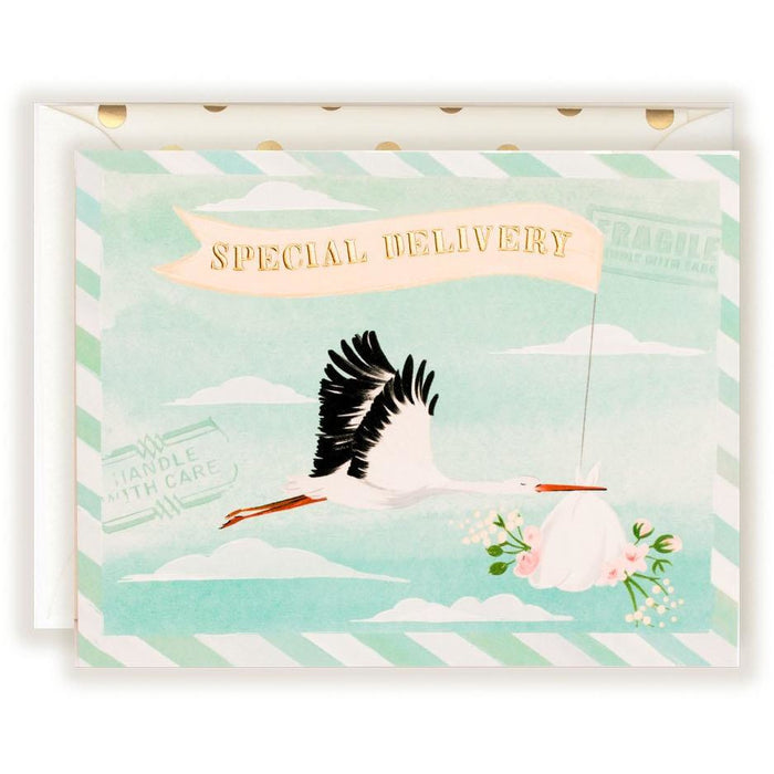 Special Delivery Baby Stork Card - The First Snow