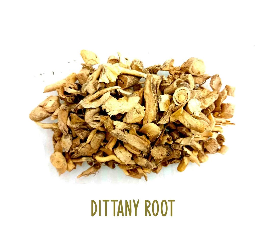 Dittany Root ~ Dried Herbs ~ Spells ~ Teas ~ In Stock