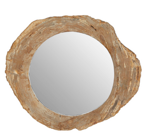 PETRITIFIED WOOD MIRROR