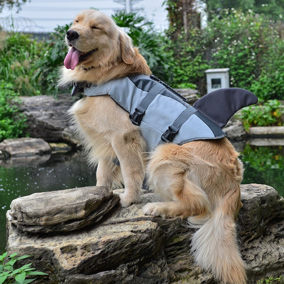 Adorable Shark Life Vest For Small Dog - gkstocks