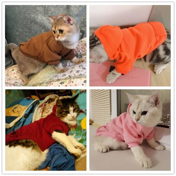 Basic Hoodie For Pets - gkstocks