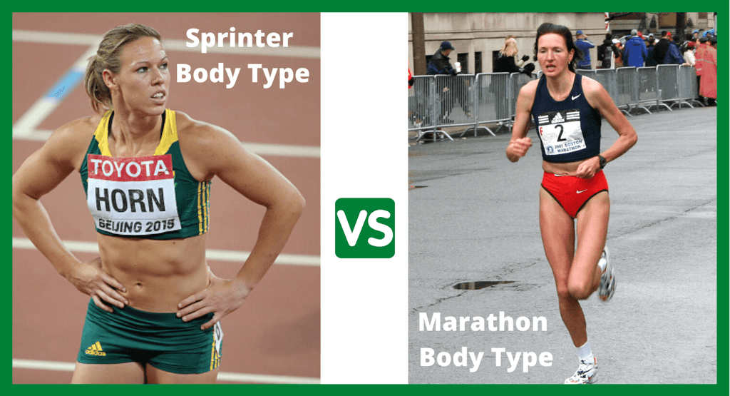 Ace fitness sprinter body type