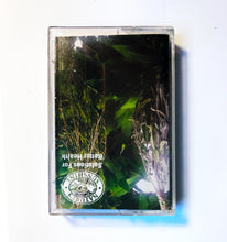 Load image into Gallery viewer, Nature's Sunshine - Solution for Better Health