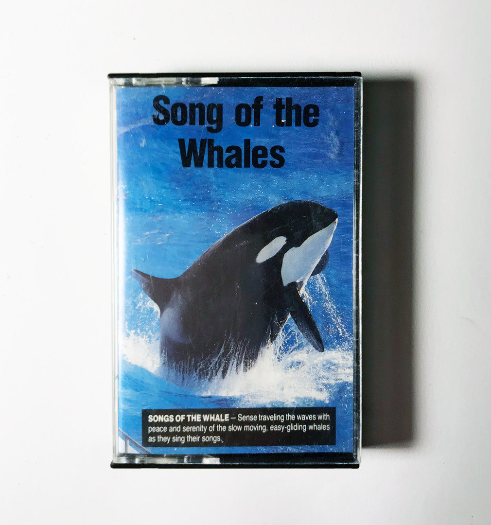 Song of the Whale (Sounds of Nature)