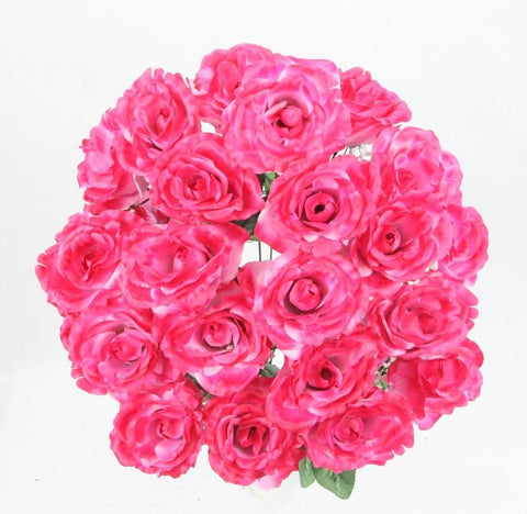 Premium Open Very Full Rose Flowers Beauty Bush