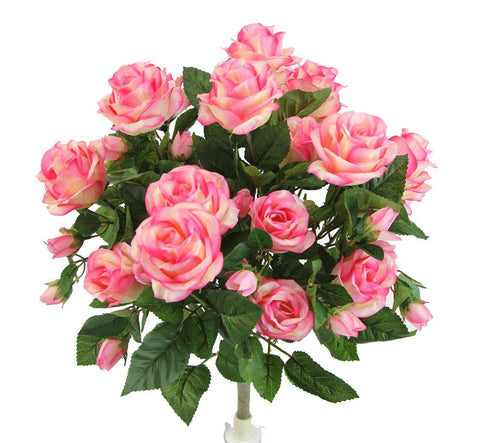 Premium Mauve Rose Bush with 15 Roses-5 available colors