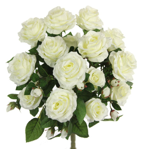 Premium Cream Rose Bush with 15 Roses-5 available colors