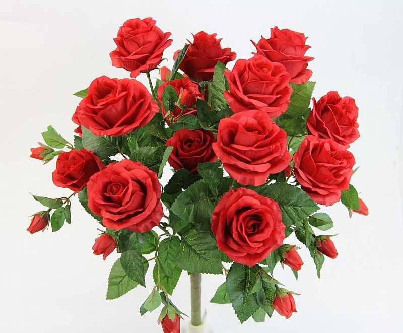 Premium Red Rose Bush With 15 Roses 5 Available Colors