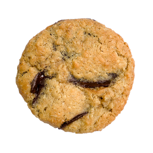 a round golden cookie with melty dark chocolate