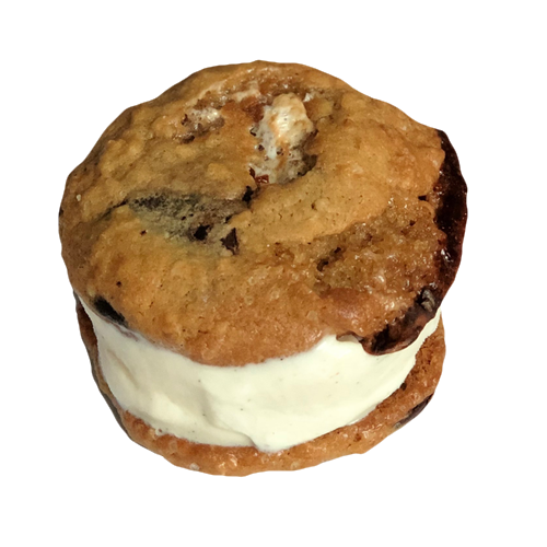 an ice cream sandwich with two s'mores cookies sandwiching vanilla ice cream