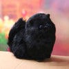 Black Cat Plush Toy