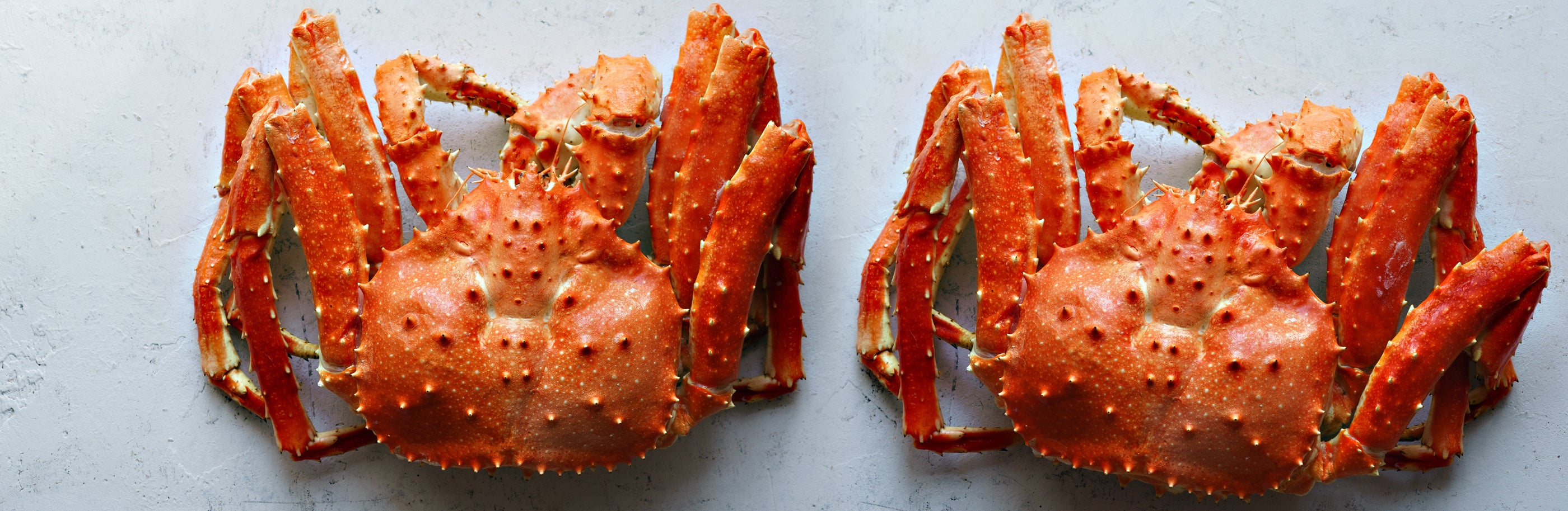 King Crab Sourcing