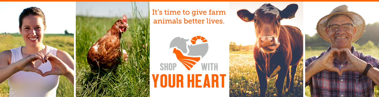 it's time to give farm animals better lives