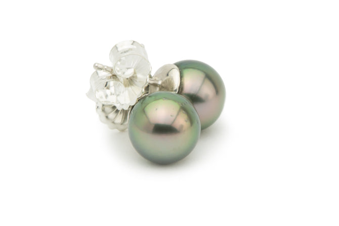 Bright peacock 10mm Tahitian pearl stud earrings on silver
