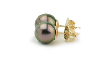 Aubergine peacock 9mm Tahitian pearl stud earrings