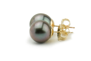 Dark purple 10mm Tahitian pearl stud earrings