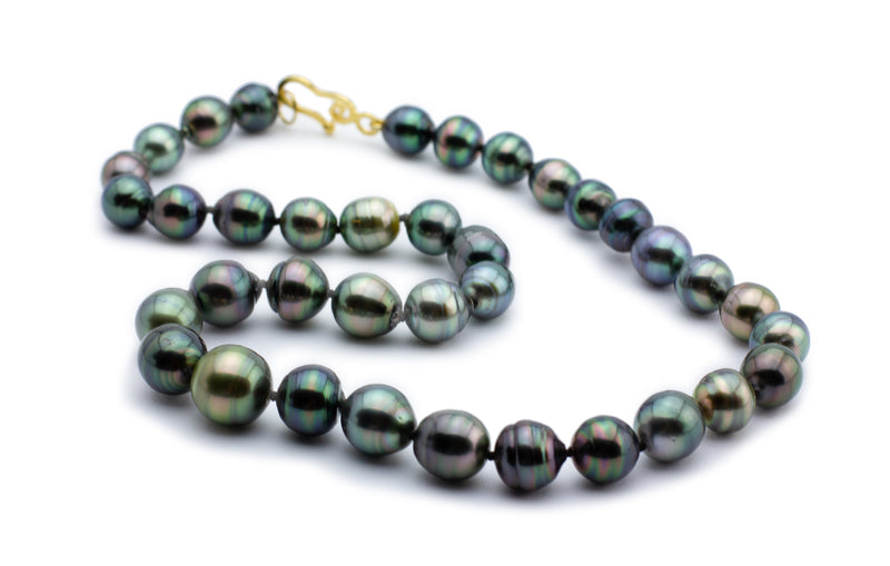 Tropical Sea Tahitian Circled Pearl Strand