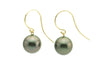 Dark purple black Tahitian pearl dangle hook earrings 14K